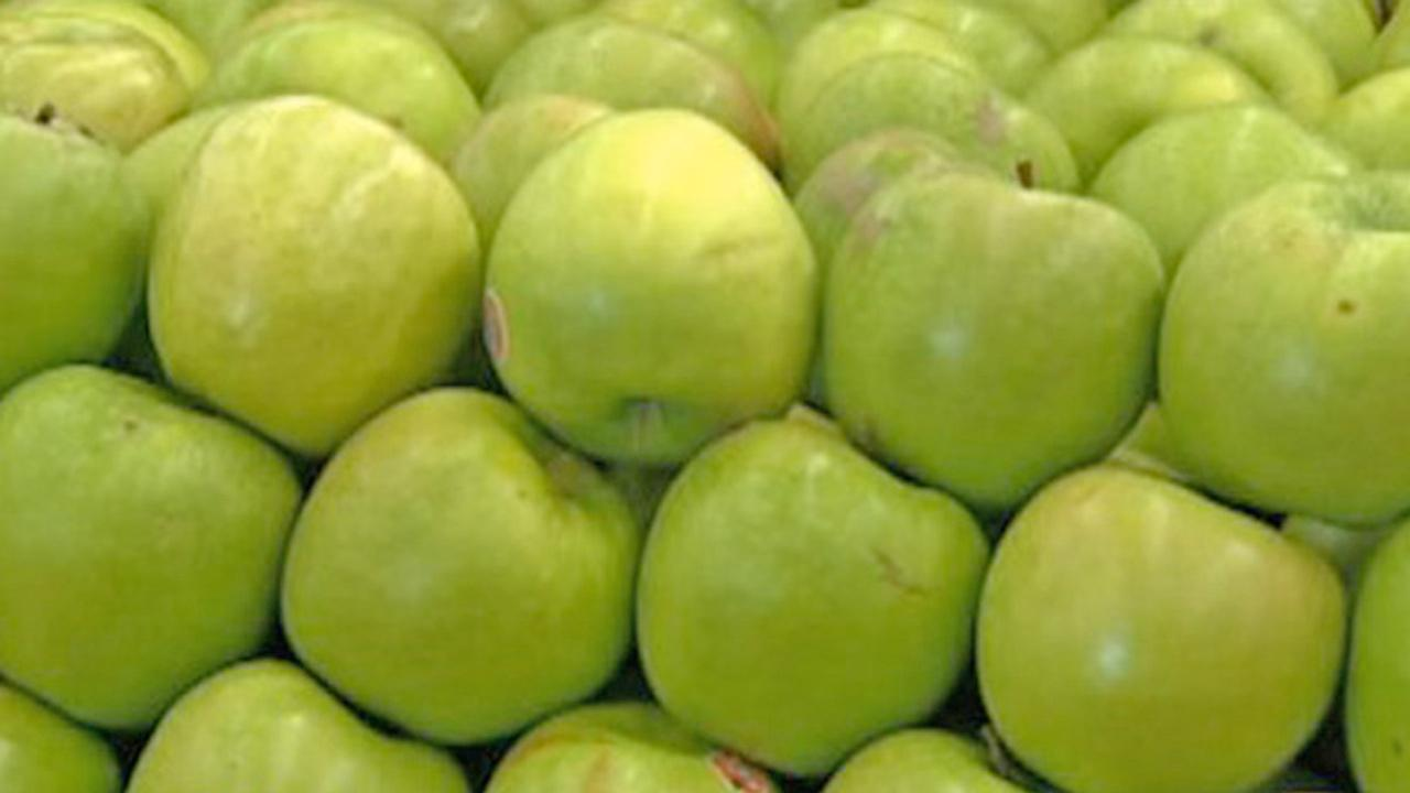 Green apples are shown stacked up in this undated file photo.