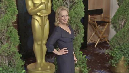Actress Meryl Streep is seen at a pre-Oscar event in this file photo.