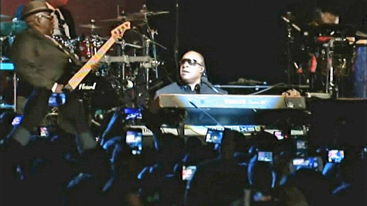 Stevie Wonder is seen during a live performance in this undated file photo.