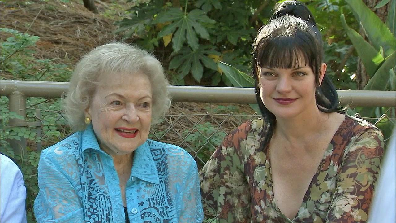 Actresses Betty White (left) and Pauley Perrette are seen at the L.A. Zoo Saturday, June 15, 2013.