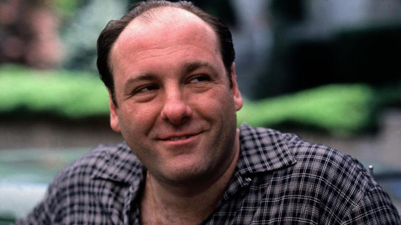 Actor James Gandolfini, who played Tony Soprano on HBOs The Sopranos, died in Italy on Wednesday, June 19, 2013, following a possible heart attack. He was 51 years old.   <span class=meta>(facebook.com&#47;TheSopranos)</span>