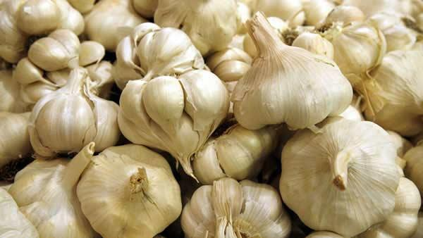 Garlic ranked No. 8 on Fitness Magazine's list of the healthiest foods on the planet. The magazine says garlic is a powerful disease fighter that can inhibit the growth of bacteria, including E. coli.