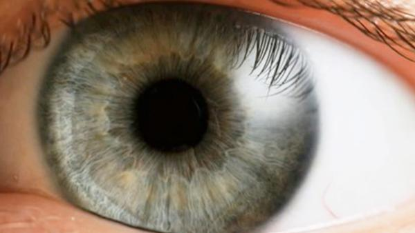 Eyeball health may indicate illness, disease