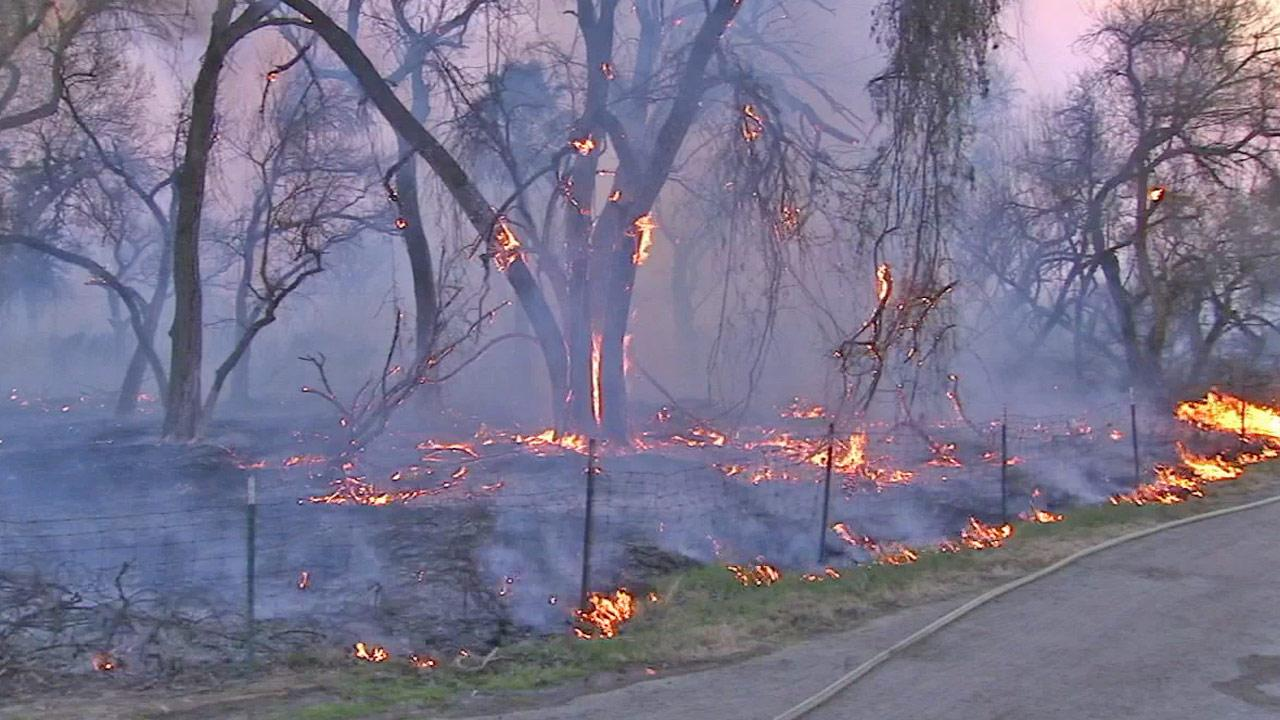 Trees and brush burn in Jurupa Valley in this 2013 photo.