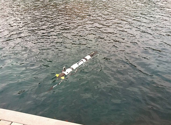 A robot goes in search of a shark. The robots 'listen' for pings from the transmitter and begin to track the shark.