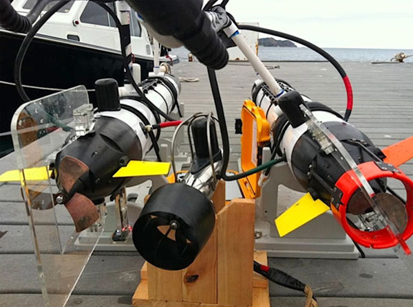 The specially-designed robots can measure water temperature, light levels and chlorophyll.  They send new information back to the scientists every 20 seconds. <span class=meta>(KABC &#47; Lisa Bartley)</span>