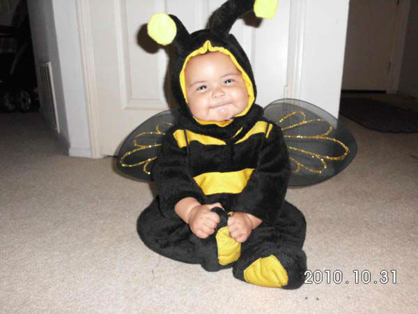ABC7 viewer Lilyana Hunter sent us this adorable photo of Leila Garrison Hunter from Moreno Valley celebrating her very first Halloween as a 6-month-old bumblebee.&#160;Post your Halloween pictures on our ABC7 Facebook page. <span class=meta>(KABC Photo&#47; ABC7 viewer Lilyana Hunter)</span>