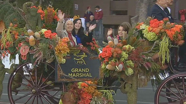Jane Goodall, Grand Marshall of the 2013 Rose Parade, waves at the crowd on Orange Grove Boulebard during the 124th annual Rose Parade in Pasadena Jan. 1, 2013. <span class=meta>(KABC Photo)</span>