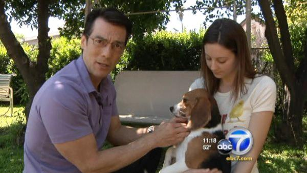 Animal research on dogs, cats and monkeys continues, and the fight for animal rights has become increasingly violent. ABC7 anchor David Ono explored the topic in a report that aired on Eyewitness News at 11 p.m. on Thursday, April 7, 2011.