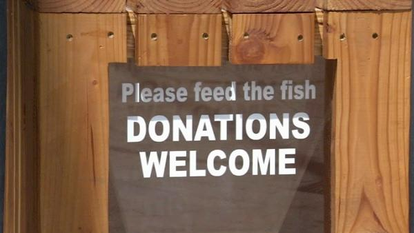 Monetary donations are suggested at the Cabrillo Marine Aquarium.