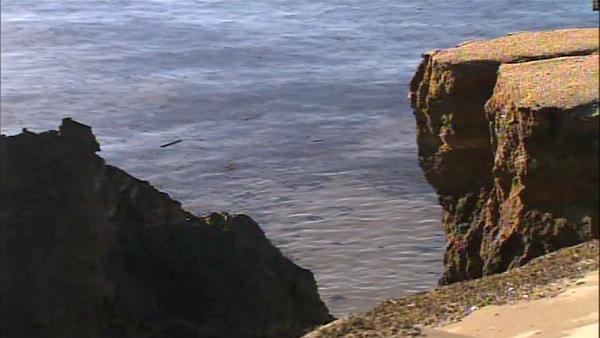 A stretch of coastal bluff in San Pedro collapsed following heavy rain. Officials say it is likely not repairable.
