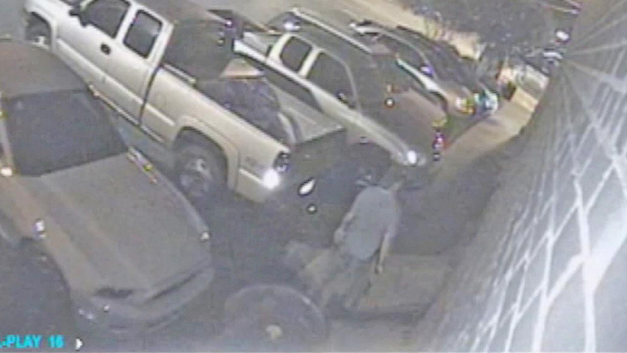 Surveillance video shows the suspected gunman who opened fire a bar in the college town of Tuscaloosa, Ala., in the early morning of Tuesday, July 17, 2012.