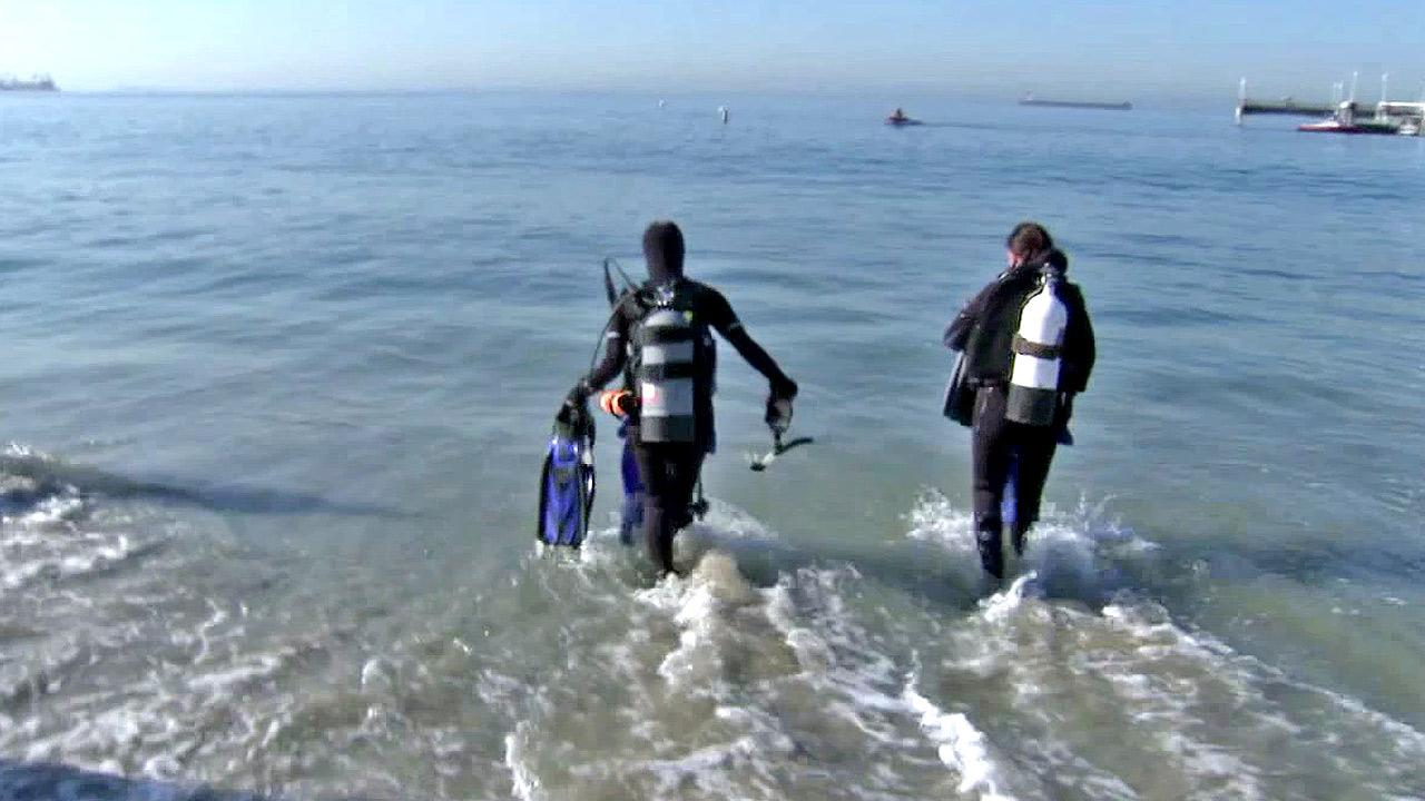 Divers are shown at a Long Beach coastal cleanup event to honor ABC7 photojournalist Artie Williams, who passed away in August while scuba diving off the coast of Catalina Island.