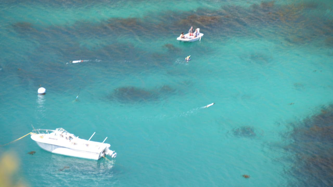 This July 2012 photo shows Fishermans Cove off Catalina Island, where Dr. Chris Lowe and Dr. Chris Clark, along with their team, tracked leopard sharks.Courtesy of Dr. Gwen Goodmanlowe