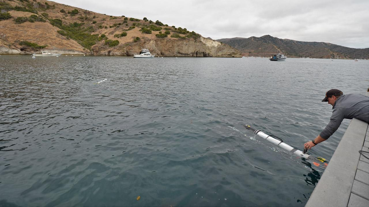 Dr. Chris Clark, a computer scientist at Harvey Mudd College, sets one of the robots off to track sharks.Courtesy of Dr. Gwen Goodmanlowe