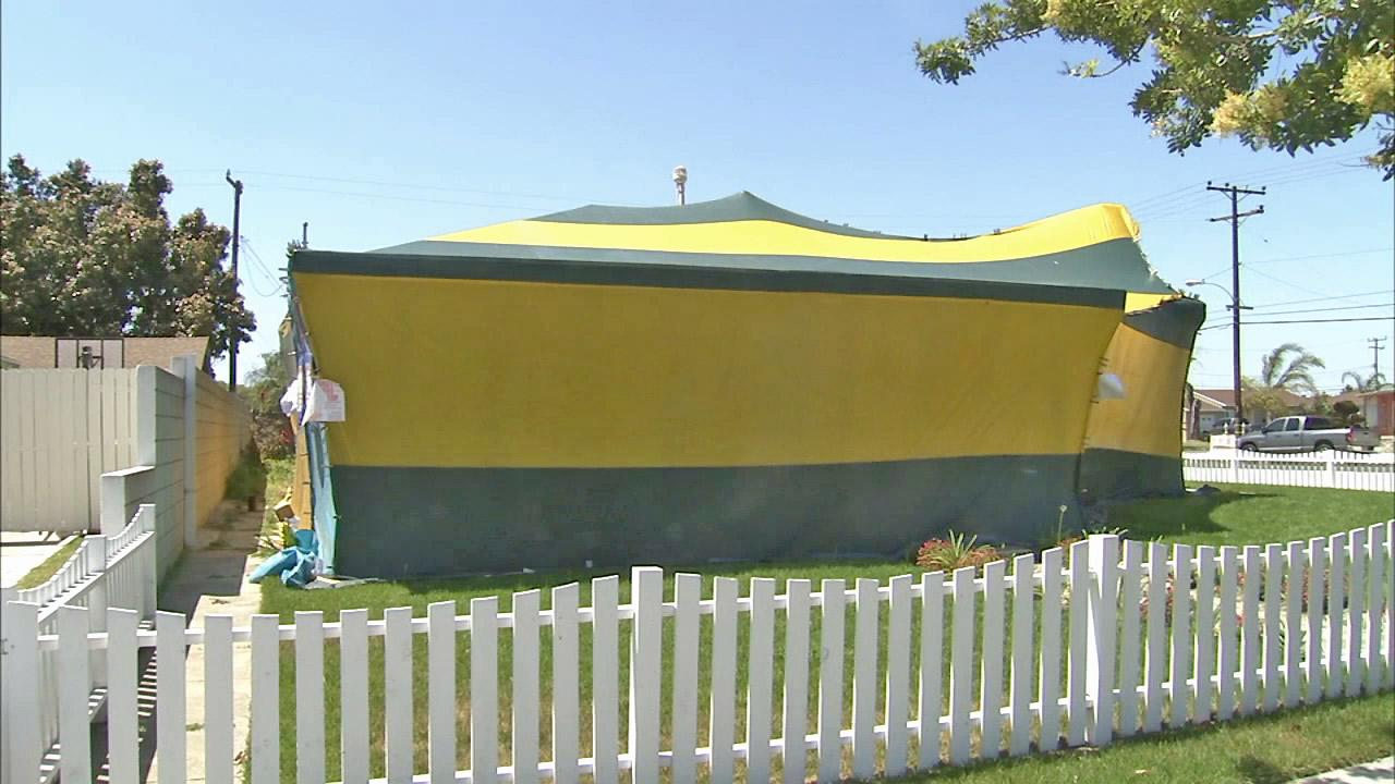 A house tented for fumigation is seen. Burglaries during fumigations are a startling new trend in the Southland. Thats whats bugging you.