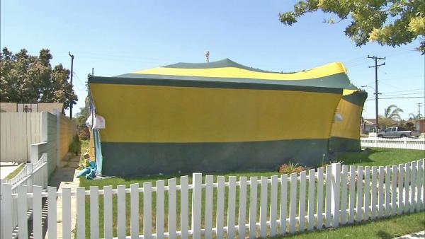A house tented for fumigation is seen. Burglaries during fumigations are a startling new trend in the Southland. That's what's bugging you.