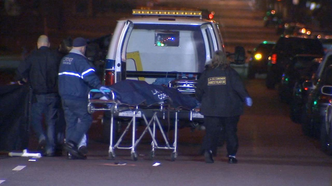 An elder woman was fatally struck by a car in Gardena on Tuesday, Jan. 15, 2013.