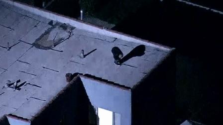 A suspect was arrested after jumping from roof to roof in Jefferson Park on Wednesday, Jan. 23, 2013.