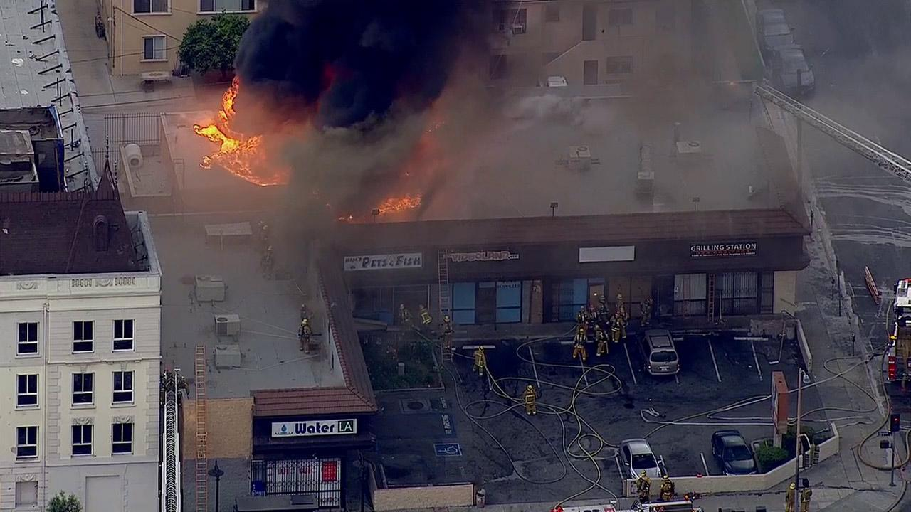 Firefighters respond to a fire at a pet store in the 1100 block of North Vermont Avenue in Los Angeles on Monday, June 10, 2013.