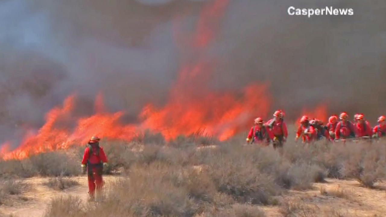 Firefighters battle a brush fire in Sycamore Canyon Wilderness Park in Riverside on Thursday, July 4, 2013.