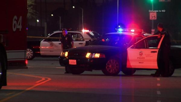 Man killed in South Los Angeles hit-and-run