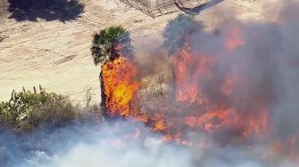 A brush fire erupted in Long Beach in the wetlands area on Wednesday, May 14, 2014.
