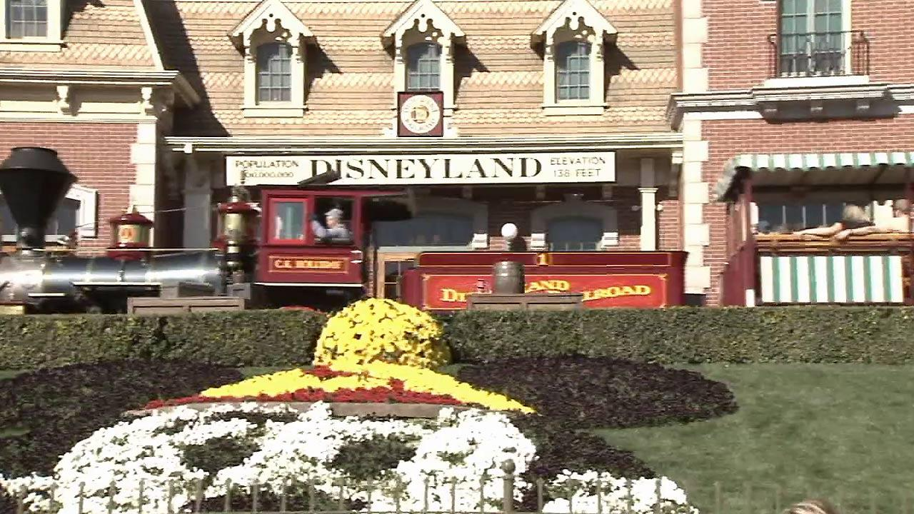 Disneyland is seen.