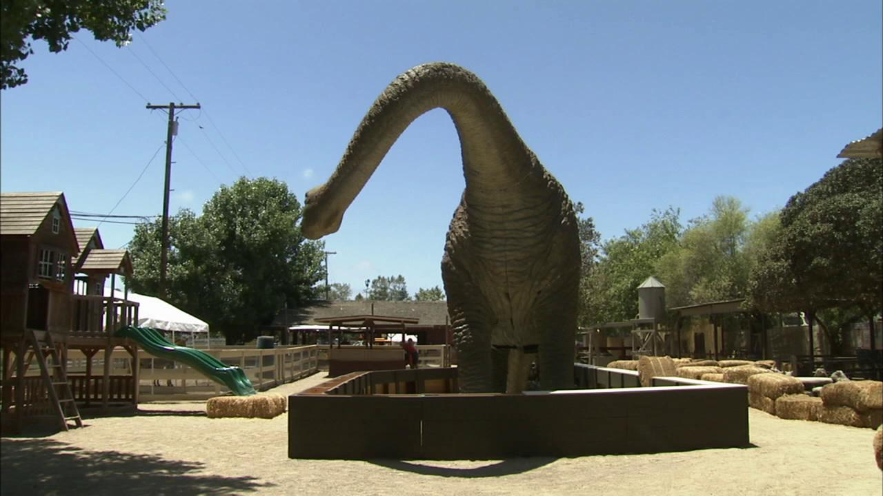 A lifelike, 40-foot long  dinosaur statue at the Zoomars Petting Zoo is seen in this undated file photo.