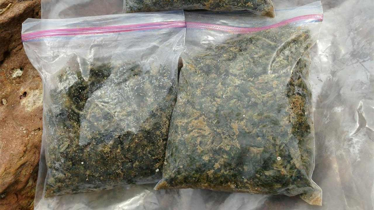 Authorities collected more than two pounds of marijuana that washed up on the shores of Irvine Cove Beach in Laguna Beach on Wednesday, July 3, 2013.