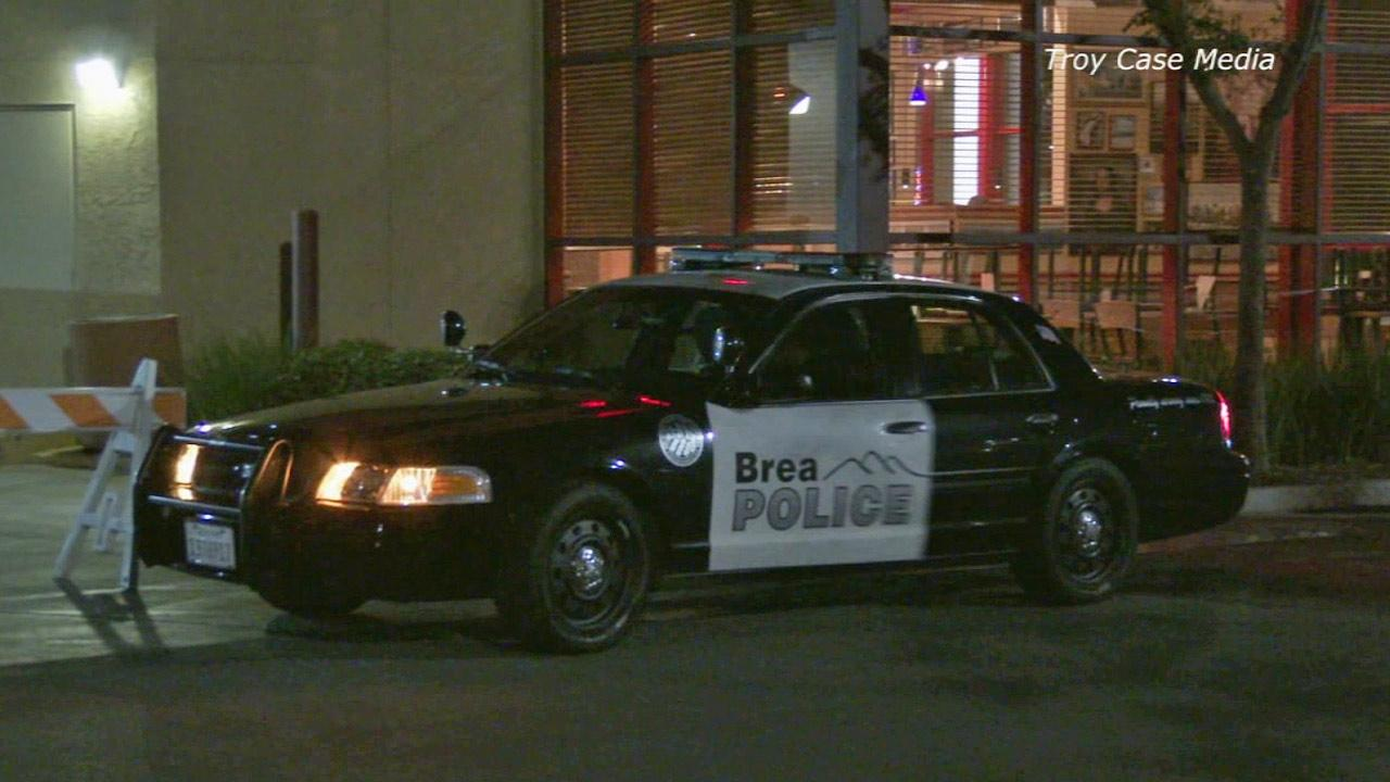 Police search for evidence in a smash-and-grab robbery at Brea Mall on Wednesday, March 26, 2014.