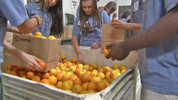 Food Forward gathers supplies for Ventura Co.