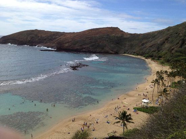 "<div class=""meta ""><span class=""caption-text "">Hanauma Bay Nature Preserve in Honolulu, Hawaii ranked No. 10 on TripAdvisor's 2013 Traveler's Choice Beaches Awards list. The travel website says the beach is great for visits year-round. (TripAdvisor)</span></div>"