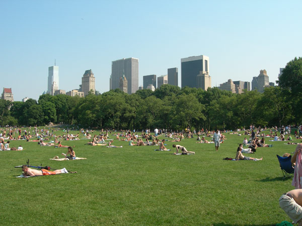 New York City was ranked No. 5 in a Travel + Leisure magazine poll of the dirtiest cities in America.
