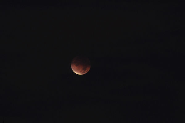 ABC7 viewer Robin Sun sent in this photo of a lunar eclipse over Chino Hills, Calif. Dec. 10, 2011.  When You Witness breaking news, or even something extraordinary, send pictures and video to video@myabc7.com, or send them to @abc7 on Twitter <span class=meta>(KABC Photo&#47; Robin Sun)</span>