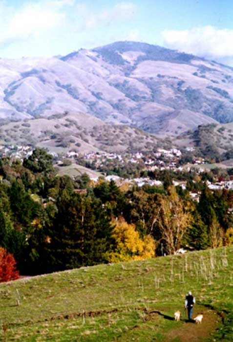 Walnut Creek, Calif. was listed as one of the top 10 cities to retire in the county. Yahoo! Finance says the East bay town is conveniently located just 20 miles east of culturally rich San Francisco, and 13 miles from the wilderness of Mt. Diablo State Park. Median home price are just above &#36;430,000. <span class=meta>(City of Walnut Creek website)</span>
