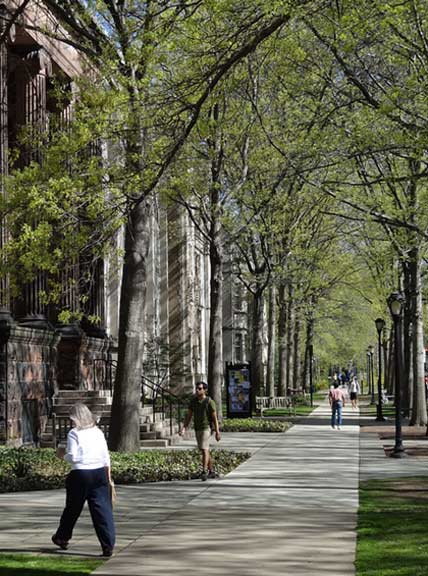 Yale University ranked No. 8 on Sierra Magazine&#39;s 2012 list of America&#39;s Greenest Colleges. The rankings are based on the school&#39;s commitment to environmental improvements. <span class=meta>(flickr&#47;Adam Jones)</span>