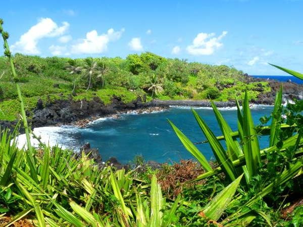 Wai&#39;anapanapa State Park in Hana, Hawaii ranked No. 17 on TripAdvisor&#39;s 2013 Traveler&#39;s Choice Beaches Awards list. The travel website says the beach is great for visits year-round. <span class=meta>(TripAdvisor)</span>