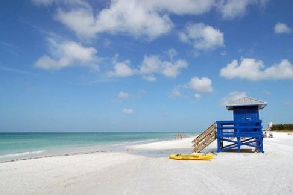 Siesta Key Public Beach in Sarasota, Fla. ranked No. 2 on TripAdvisor&#39;s 2013 Traveler&#39;s Choice Beaches Awards list. The travel website says the beach is great for visits year-round. <span class=meta>(TripAdvisor)</span>