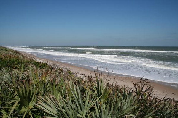 Canaveral National Seashore in Titusville, Fla. ranked No. 23 on TripAdvisor&#39;s 2013 Traveler&#39;s Choice Beaches Awards list. The travel website says the beach is great for visits year-round. <span class=meta>(TripAdvisor)</span>