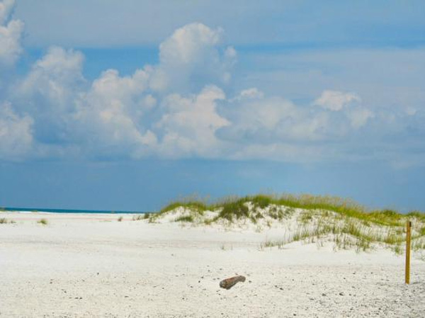 Gulf Islands National Seashore in Pensacola, Fla. ranked No. 3 on TripAdvisor&#39;s 2013 Traveler&#39;s Choice Beaches Awards list. The travel website says the beach is great for visits year-round. <span class=meta>(TripAdvisor)</span>