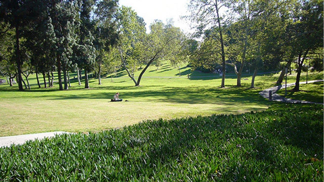University of California, Irvine ranked No. 9 on Sierra Magazines 2012 list of Americas Greenest Colleges. <span class=meta>(flickr&#47;A Florian)</span>