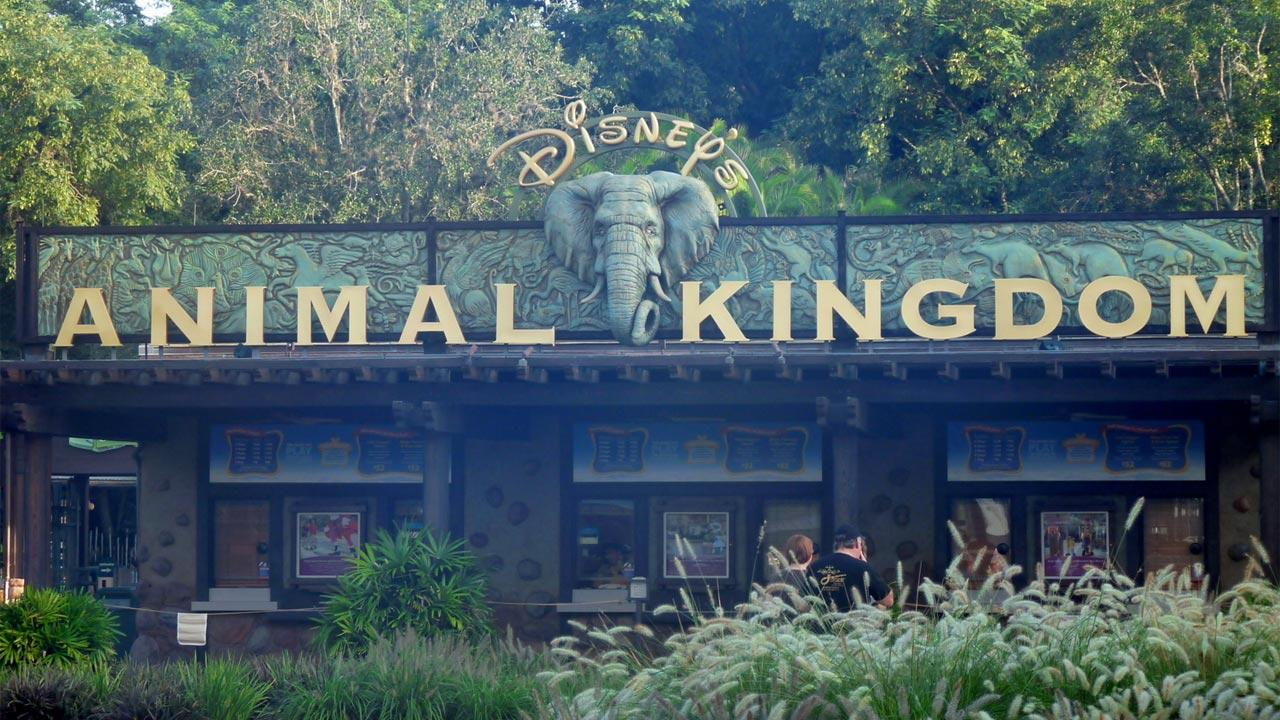 Disneys Animal Kingdom is seen in this undated file photo.