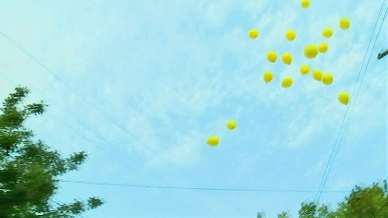 Balloons are released before Ariel Castros house is torn down Wednesday, Aug. 7, 2013.