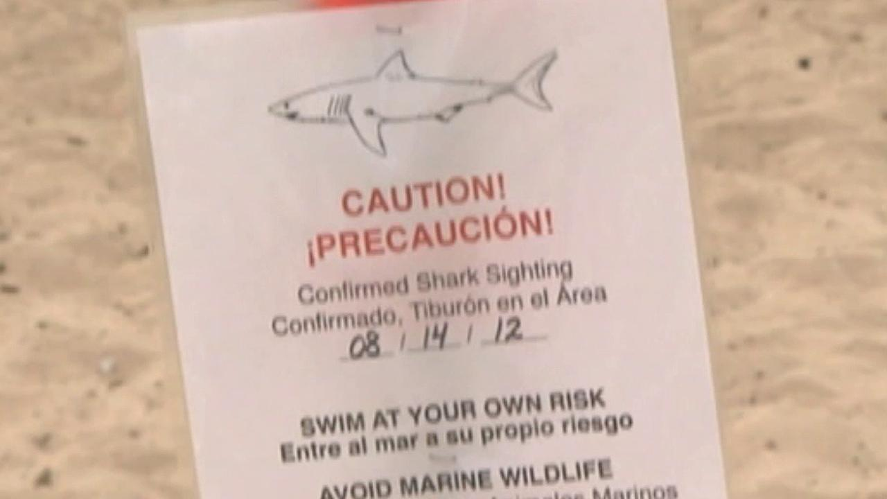 A warning sign is seen on a Santa Barbara beach after a shark was spotted on Tuesday, Aug. 14, 2012, near Leadbetter Point.