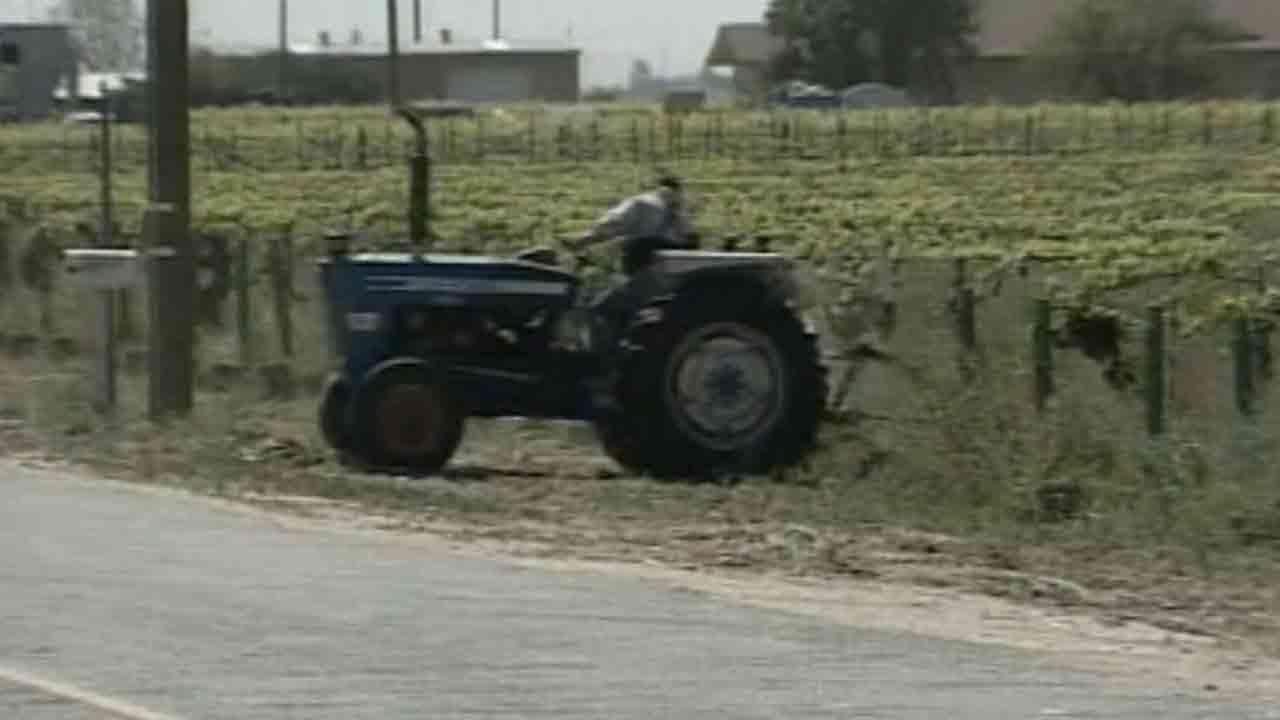 A man is seen driving a tractor used for agricultural purposes in this undated file photo.
