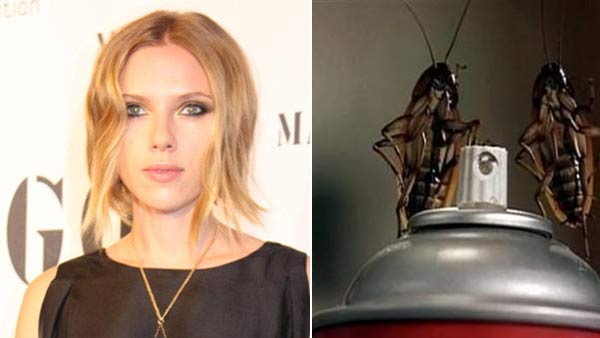 Scarlett Johansson runs the other way when she sees cockroaches. (Pictured on the right: Creepy crawlers Ralph and Rodney in a scene from the Jerry O'Connell film 'Joe's Apartment'.)