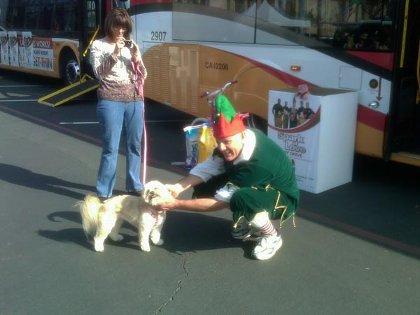 Garth the Elf gets help from a puppy at the Stuff-A-Bus event at Los Cerritos Center on Thursday, Nov. 18, 2010. <span class=meta>(KABC)</span>