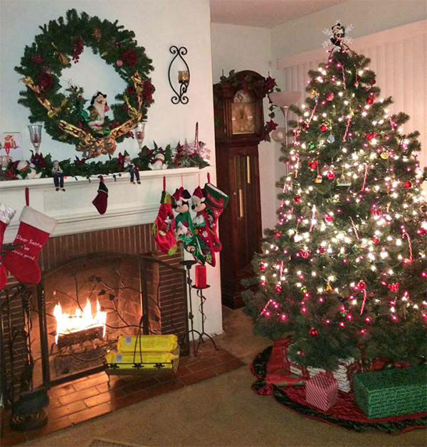 ABC7 viewer Rita Ayala shared this holiday snapshot. Use #ABC7HomeForTheHolidays on Facebook, Twitter and Instagram to share your holiday photos with ABC7. We&#39;ll feature some of the best on our newscasts and here on abc7.com! <span class=meta>(KABC Photo)</span>