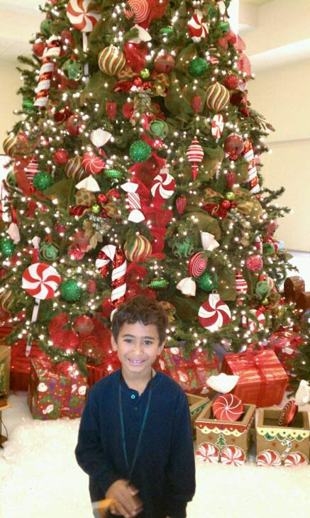 Merry Christmas from Jireh E. Masalosalo. <span class=meta>(ABC7 Photo&#47; Jireh E. Masalosalo)</span>